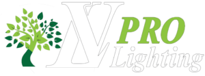 LVpro lighting- landscape lighting in LA