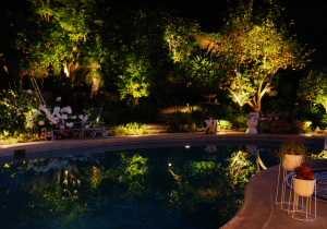 LVpro lighting landscape lighting