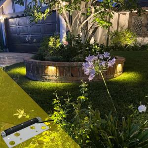 LV Pro Lighting Edge Light