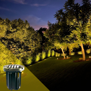 LV Pro Lighting In Ground Well Light